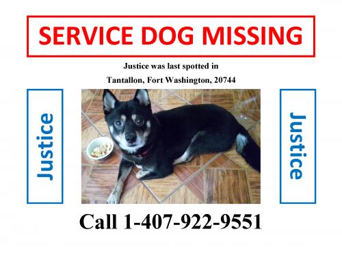 Lost Unknown Dog last seen Near St Andrews Dr, Fort Washington, MD 20744, Fort Washington, MD 20744